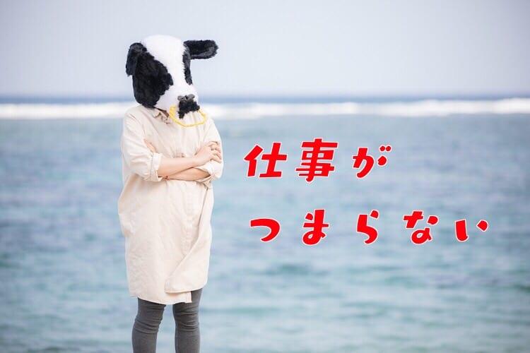 海岸で腕を組む牛