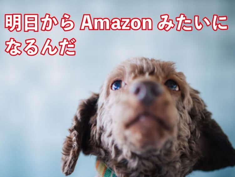 日本人はAmazonと同じ税金対策が出来るのか?