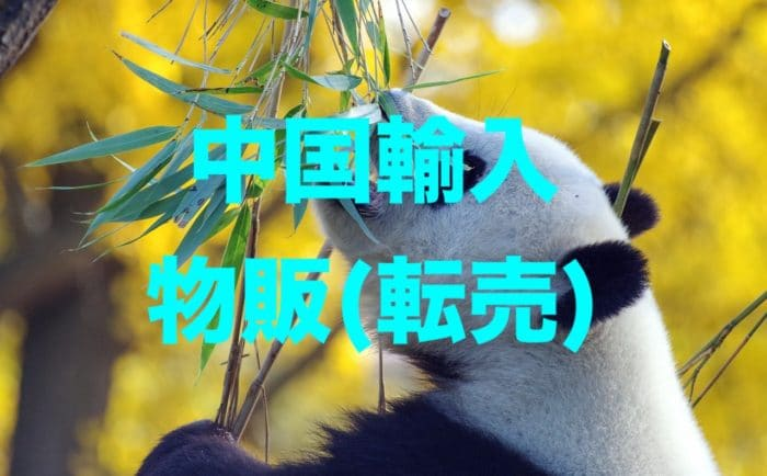 中国輸入物販(転売)