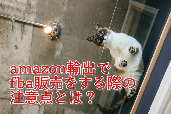 amazon輸出でfba販売をする際の注意点とは?