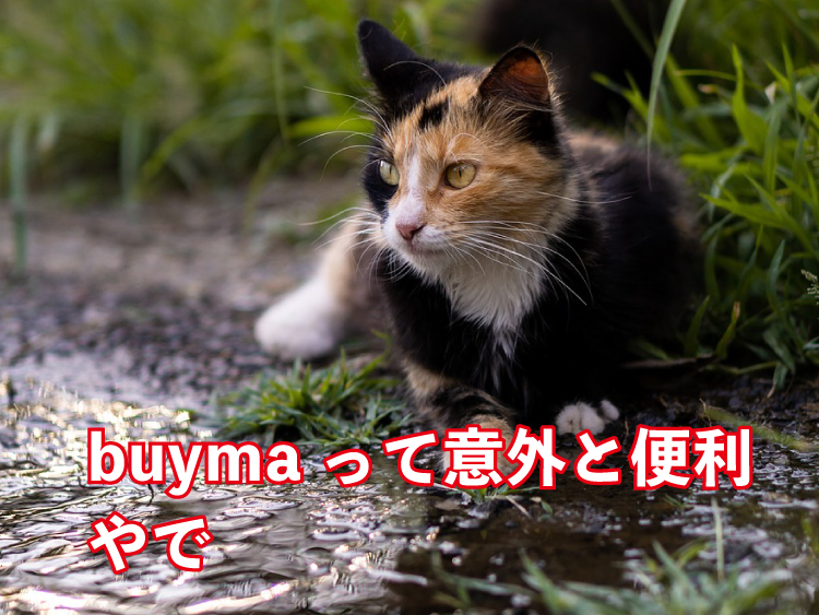 buymaの評判